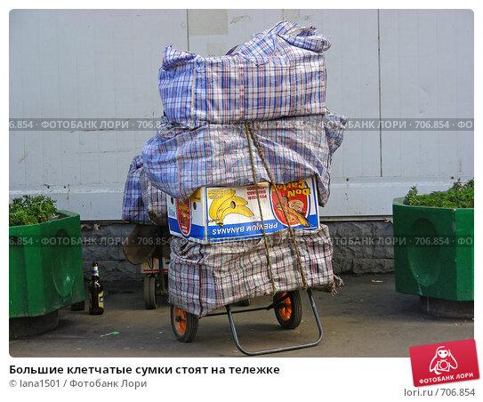 Хозяйственные клетчатые сумки. клетчатые большие сумки - Сумки. удобны. клетчатые. баулы челнока. .