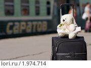 фотограф Саратов.  Свадебные мишки.  2011-01-03Свадебный