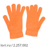 Оранжевые перчатки; фотограф Александр Подшивалов; дата съёмки 2 января...