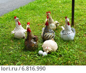 Птичий двор. Куриная семья, фото № 6816990, снято 28 августа 2014 г. (c) Валерия Попова / Фотобанк Лори