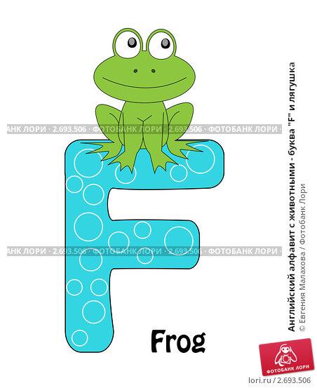 "Английский алфавит с животными - буква ""F"" и лягушка, иллюстрация № 2693506 (c) Евгения Малахова / Фотобанк Лори"
