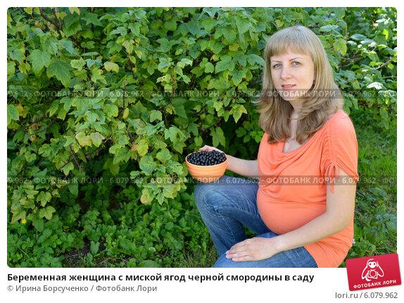 Смородина черная польза беременным
