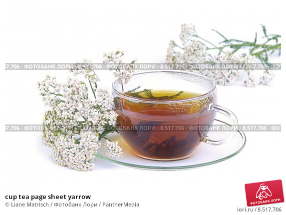 Organic Yarrow Tea  Kosher CaffeineFree GMOFree  18