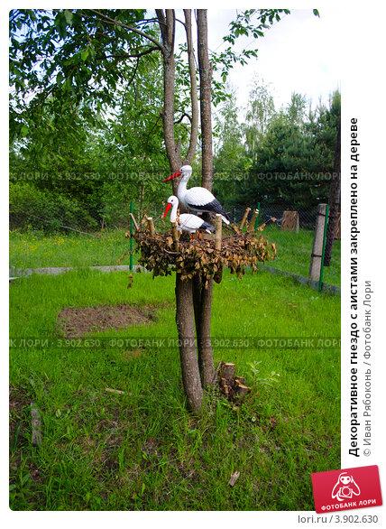Декоративное гнездо с аистами закреплено на дереве; фото 3902630, фотограф Иван Рябоконь. Фотобанк Лори - Продажа фотографий, ил