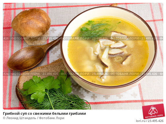 Рецепт грибного супа из свежих грибов пошагово с