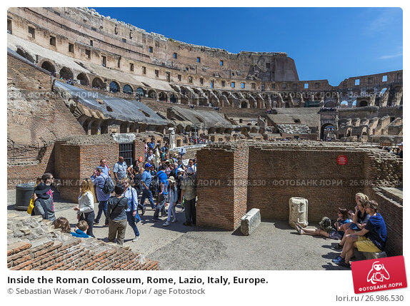 Daron Roman Colosseum 3D Puzzle with Book 131Piece