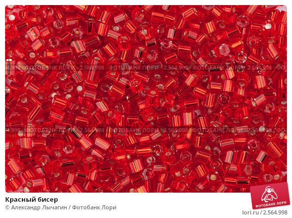 Красный бисер; фотограф Александр Лычагин; дата съёмки 22 мая 2011 г...