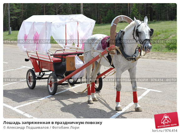 Как сделать тележка для лошади