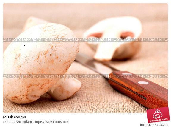 Собирать грибы во сне значение для беременных 10