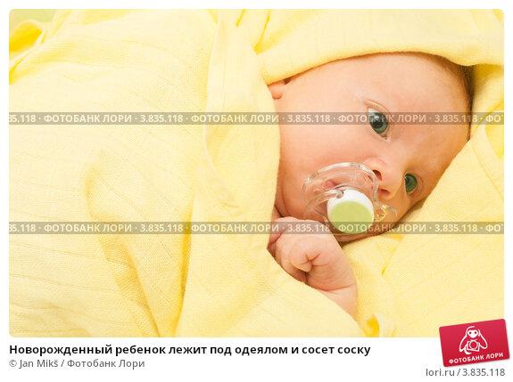 Новорожденный ребенок лежит под одеялом и сосет соску; фотограф Jan Mikš; д