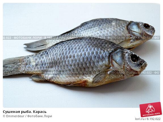 Простой с рыбой карась