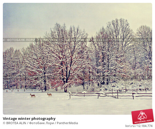 11 Vintage Wintery Farm Pictures  Modern Farmer