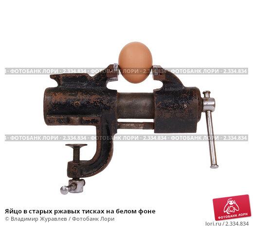 yaytsa-v-tiskah-video