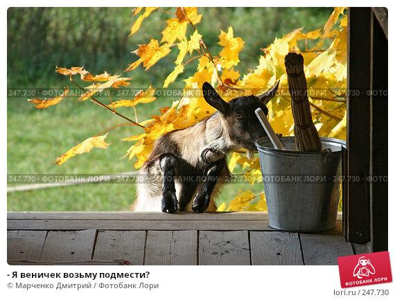 Купить «- Я веничек возьму подмести?», фото № 247730, снято 30 сентября 2007 г. (c) Марченко Дмитрий / Фотобанк Лори