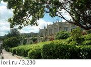 Купить «Воронцовский дворец», эксклюзивное фото № 3230, снято 15 июня 2019 г. (c) Юлия Кузнецова / Фотобанк Лори