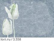 Голубые тюльпаны, коллаж с фактурой рисовой бумаги. Стоковая иллюстрация, иллюстратор Tamara Kulikova / Фотобанк Лори