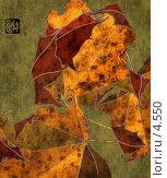 Купить «Кленовые листья, коллаж с фактурой бумаги», иллюстрация № 4550 (c) Tamara Kulikova / Фотобанк Лори