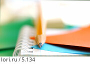 Купить «Карандаш, тетрадь, бумага для записей», фото № 5134, снято 15 июня 2006 г. (c) Ольга Красавина / Фотобанк Лори