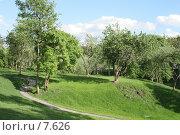 Парк. Дорожка, петляющая между деревьев. Стоковое фото, фотограф Ирина Терентьева / Фотобанк Лори