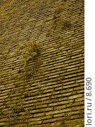 Купить «Старинная кирпичная кладка, поросшая травой», фото № 8690, снято 19 августа 2006 г. (c) Тузов Александр / Фотобанк Лори