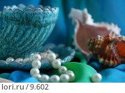 Купить «Натюрморт в синих тонах с чашкой, ракушками и жемчужной нитью », фото № 9602, снято 27 июня 2006 г. (c) Ольга Красавина / Фотобанк Лори