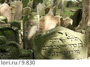 Купить «Старое еврейское кладбище в Праге», фото № 9830, снято 5 июня 2006 г. (c) Cangaroo / Фотобанк Лори