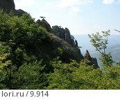 Купить «Западный склон горы Демерджи, АР Крым», фото № 9914, снято 13 сентября 2005 г. (c) Минакова Татьяна / Фотобанк Лори