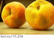Сгнившие фрукты. Стоковое фото, фотограф Екатерина / Фотобанк Лори