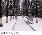 Купить «Зимний парк», фото № 12778, снято 12 ноября 2006 г. (c) Рыжов Андрей / Фотобанк Лори