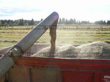 Купить «Уборка», фото № 13174, снято 24 августа 2005 г. (c) Удодов Алексей / Фотобанк Лори
