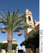 Купить «Пальма и часть Кафедрального собора в Терразини. Сицилия», фото № 13302, снято 4 ноября 2006 г. (c) Маргарита Лир / Фотобанк Лори