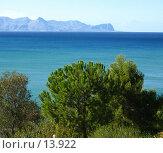 Купить «Море, мыс и сосна», фото № 13922, снято 3 ноября 2006 г. (c) Маргарита Лир / Фотобанк Лори