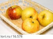 Купить «Корзина с яблоками», фото № 16578, снято 22 сентября 2018 г. (c) Угоренков Александр / Фотобанк Лори