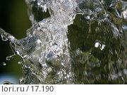 Купить «Брызги», фото № 17190, снято 25 июня 2006 г. (c) Валерий Назаров / Фотобанк Лори