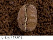Купить «Кофе молотый и в зернах», фото № 17618, снято 5 февраля 2007 г. (c) Юрий Синицын / Фотобанк Лори