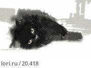 Купить «Черный кот», фото № 20418, снято 23 февраля 2019 г. (c) Захаров Владимир / Фотобанк Лори