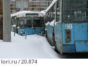 Купить «Ржавые троллейбусы», фото № 20874, снято 2 марта 2007 г. (c) Николай Гернет / Фотобанк Лори