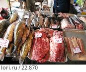 Купить «Рыба в ассортименте», фото № 22870, снято 27 апреля 2006 г. (c) Марюнин Юрий / Фотобанк Лори