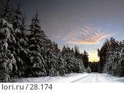 Купить «На лесной дороге», фото № 28174, снято 6 января 2006 г. (c) Андрей Явнашан / Фотобанк Лори