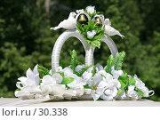 Свадебные кольца на крышу автомобиля. Стоковое фото, фотограф Kupreenko Natalia / Фотобанк Лори