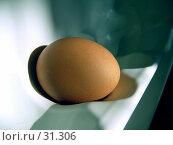 Купить «Яйцо в холодильнике», фото № 31306, снято 6 июня 2005 г. (c) Даша Богословская / Фотобанк Лори