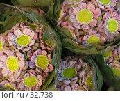 Купить «Букеты лотосов», фото № 32738, снято 23 марта 2007 г. (c) Колчева Ольга / Фотобанк Лори