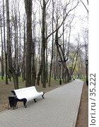 Белая скамейка в парке. Стоковое фото, фотограф Артемьева Анна / Фотобанк Лори