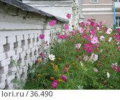 Купить «Ограда Воскресенского собора, Почеп», фото № 36490, снято 18 августа 2018 г. (c) Элеонора Лукина (GenuineLera) / Фотобанк Лори