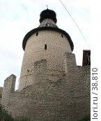 Купить «Одна из башен старого Крома (Кремля), г. Псков», фото № 38810, снято 15 июля 2020 г. (c) Элеонора Лукина (GenuineLera) / Фотобанк Лори