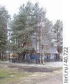 Купить «Дом в деревьях», фото № 40722, снято 30 апреля 2007 г. (c) Удодов Алексей / Фотобанк Лори