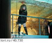 Купить «Алла Пугачёва», фото № 40730, снято 14 декабря 2017 г. (c) Сергей Лаврентьев / Фотобанк Лори