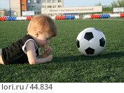 Купить «Сосредоточенность», фото № 44834, снято 19 мая 2007 г. (c) Марюнин Юрий / Фотобанк Лори