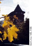 Купить «Владимир. Водонапорная башня. Осень», фото № 45198, снято 17 ноября 2018 г. (c) Alex / Фотобанк Лори
