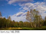 Купить «Пейзаж с облаками на березовой опушке», фото № 46998, снято 12 мая 2007 г. (c) Роман Коротаев / Фотобанк Лори